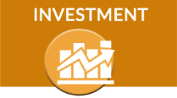 Annual Investment Survey